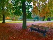 Autumn in Odense.